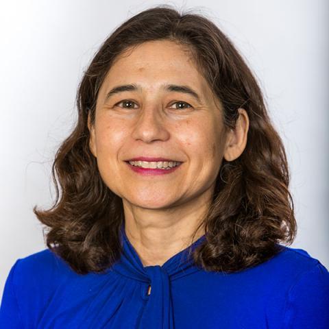Yvonne Kapila, DDS, PhD